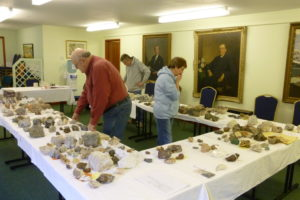 Volunteers working on minerals collection