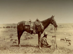 The horse wrangler. Photo by Erwin E Smith. Library of Congress (public domain).