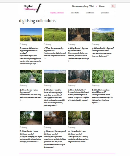 Digitising collections landing page